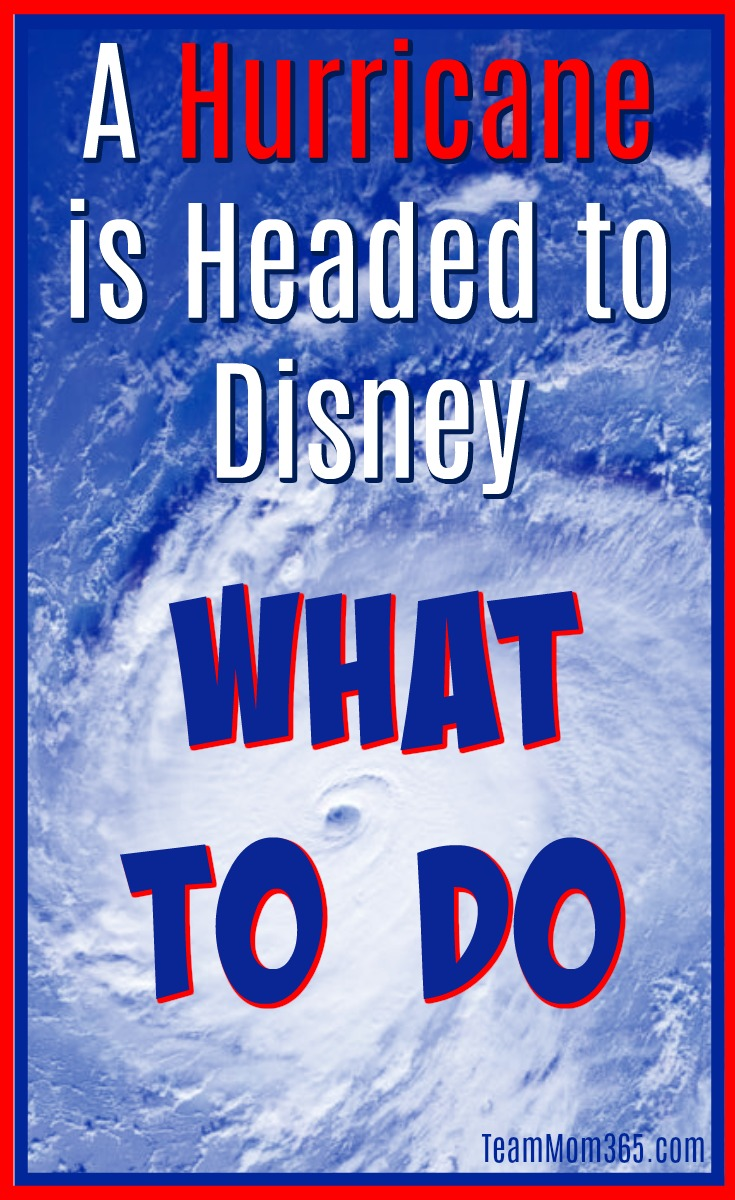 A Hurricane is Coming to Disney What to Do