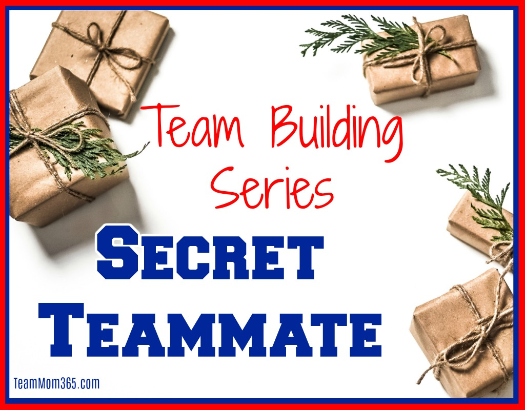 Team Building Series Secret Teammate
