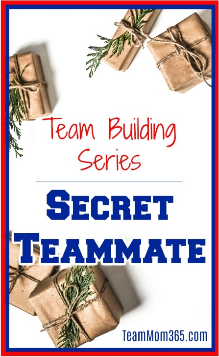 Team Building Series - Secret Teammate