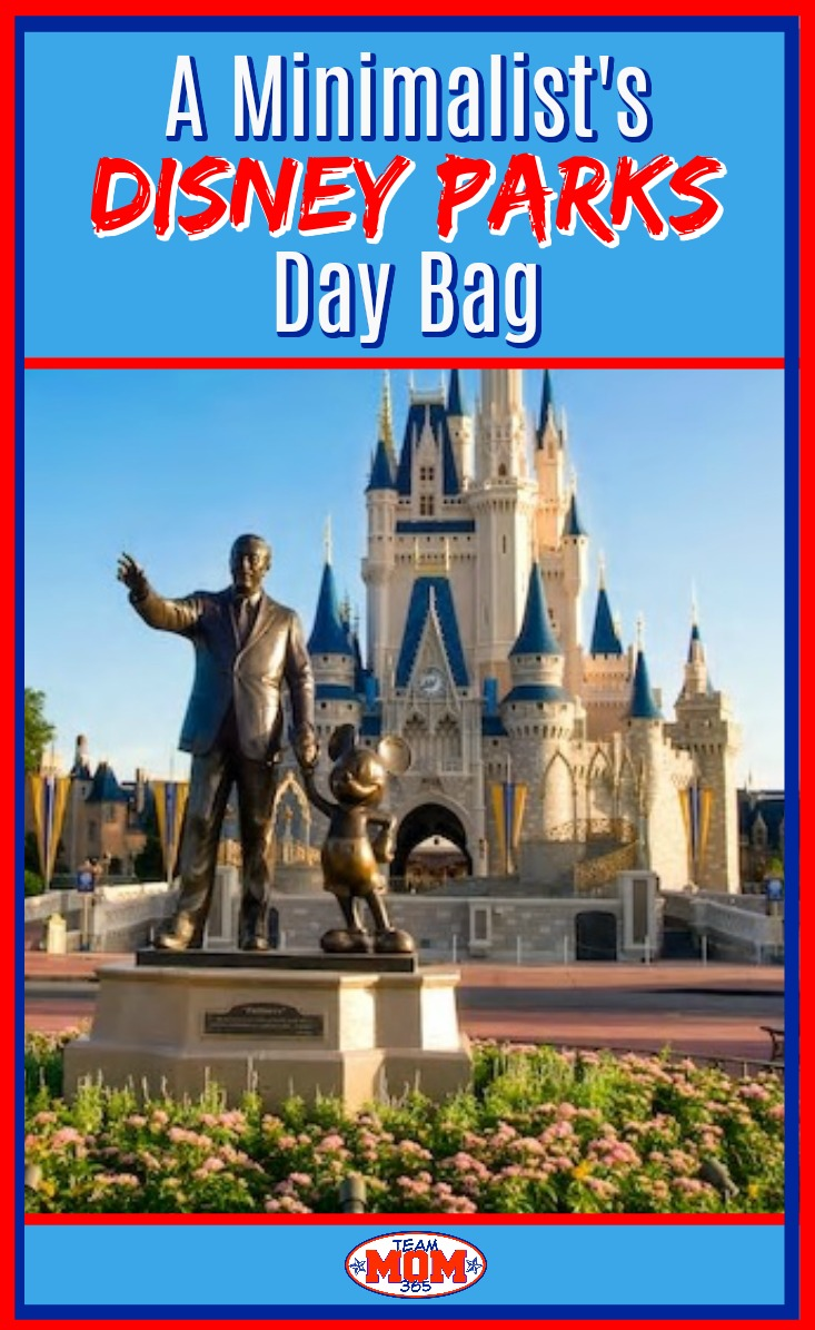 Disney Parks Day Bag