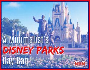 Disney Parks Day Bag